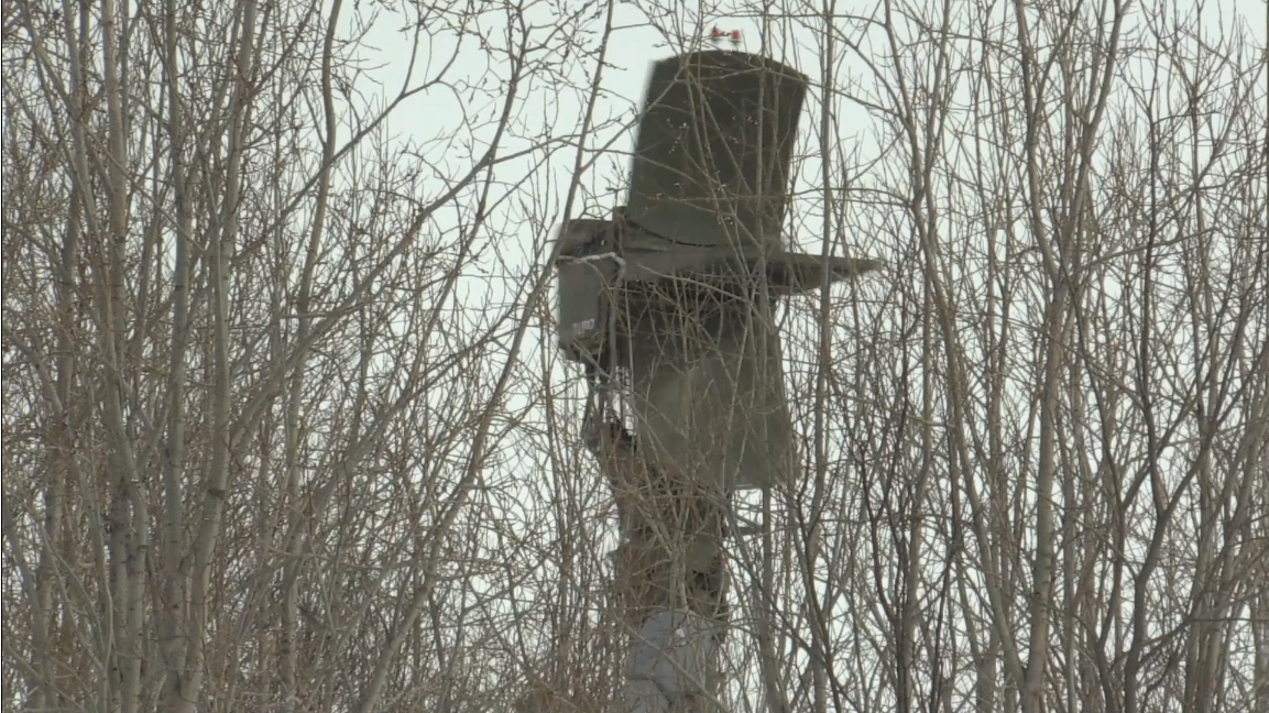 Screenshot_2021-04-10 Защитники границы в Мурманской области провели контрольную проверку подр...png